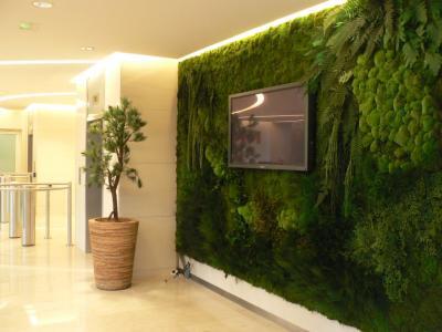 Un mur végétal à la maison?Décorescence - Décoratrice UFDI
