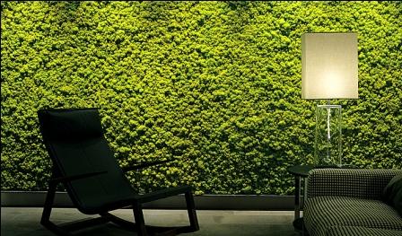 Un Mur Vegetal A La Maison Decorescence Decoratrice Ufdi